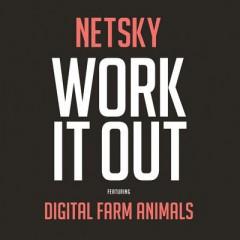 Work It Out - Netsky Feat. Digital Farm Animals