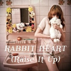 Rabbit Heart (Raise It Up) - Florence & The Machine
