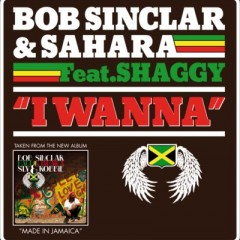 I Wanna - Bob Sinclar & Sahara feat. Shaggy