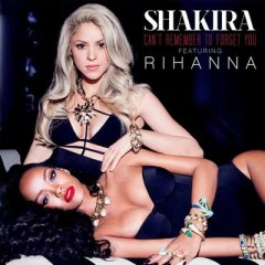 Can't Remember To Forget You - Shakira feat. Rihanna