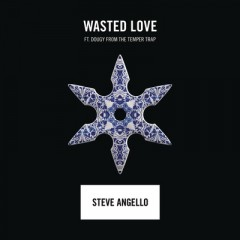 Wasted Love - Steve Angello Feat. Dougy
