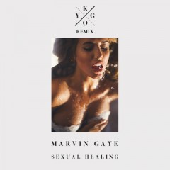 Sexual Healing (Remix) - Marvin Gaye