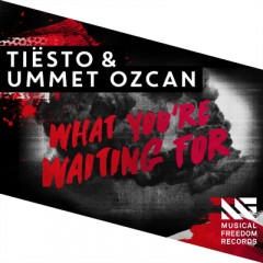 What You're Waiting For - Tiesto & Ummet Ozcan