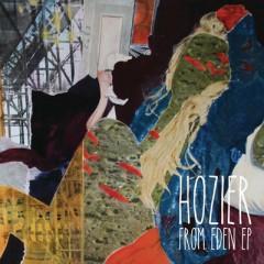 Arsonist's Lullabye - Hozier