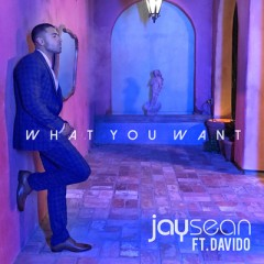 What You Want - Jay Sean & Davido