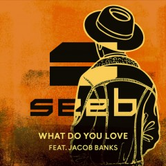 What Do You Love - Seeb feat. Jacob Banks