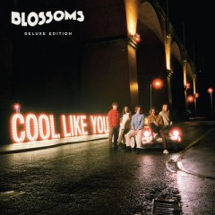 I Can't Stand It - Blossoms
