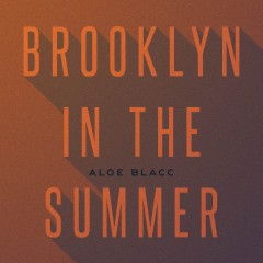 Brooklyn In The Summer - Aloe Blacc