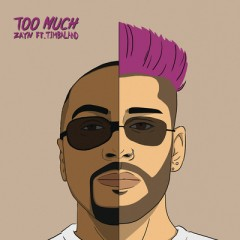 Too Much - Zayn feat. Timbaland