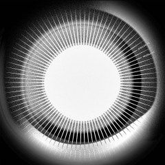 Moonlight - Disclosure
