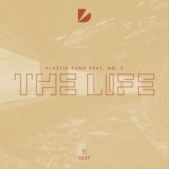 The Life (Remix) - Plastik Funk & Mr V