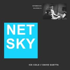Ice Cold - Netsky & David Guetta