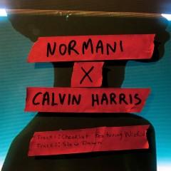 Checklist - Normani & Calvin Harris feat. WizKid