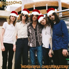 Wonderful Christmas Time - Blossoms