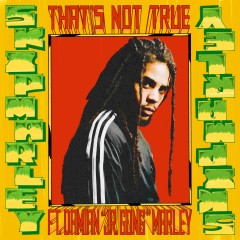 That's Not True - Skip Marley feat. Damian Jr Gong Marley