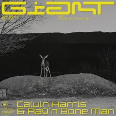 Giant - Calvin Harris & Rag'n'bone Man