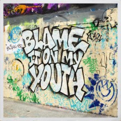 Blame It On My Youth - Blink 182