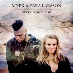 Never Forget You - Mnek & Zara Larsson