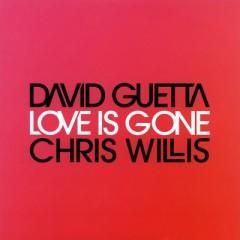 Love Is Gone - David Guetta feat. Chris Willis