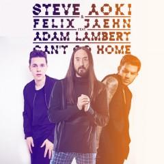 Can't Go Home - Steve Aoki & Felix Jaehn feat. Adam Lambert