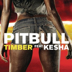 Timber - Pitbull feat. Kesha