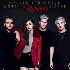 Starving - Hailee Steinfeld & Grey feat. Zedd