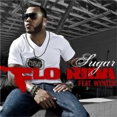 Sugar - Flo Rida feat. Wynter