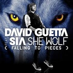 She Wolf (Falling To Pieces) - David Guetta feat. Sia