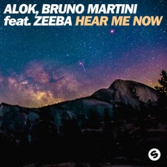 Hear Me Now - Alok & Bruno Martini feat. Zeeba