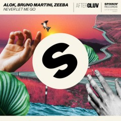 Never Let Me Go - Alok & Bruno Martini feat. Zeeba