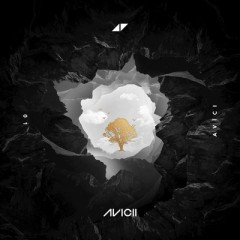 Without You - Avicii Feat. Sandro Cavazza