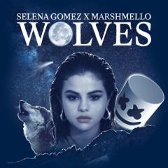 Wolves - Selena Gomez & Marshmello