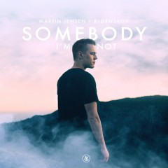 Somebody I'm Not - Martin Jensen Feat. Bjornskov