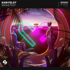 Post Malone - Sam Feldt feat. Rani