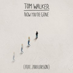 Now You're Gone - Tom Walker feat. Zara Larsson