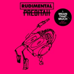 Mean That Much - Rudimental & Perditah Feat. Morgan
