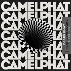 Rabbit Hole - CamelPhat & Jem Cooke