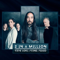 2 In A Million - Steve Aoki, Sting & Shaed