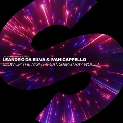 Blow Up The Night - Leandro Da Silva & Ivan Cappello feat. Sam Stray Wood