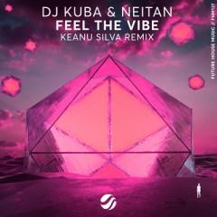 Feel The Vibe (Remix) - DJ Kuba & Neitan