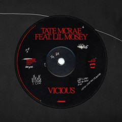 Vicious - Tate McRae feat. Lil Mosey