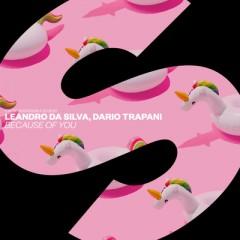 Because Of You - Leandro Da Silva & Dario Trapani