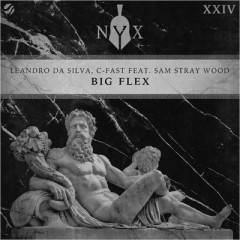 Big Flex - Leandro Da Silva & C-Fast feat. Sam Stray Wood