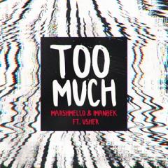 Too Much - Marshmello & Imanbek feat. USHER