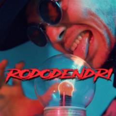 Rododendri - Bermudu Divstūris