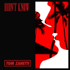 Didn't Know - Tom Zanetti