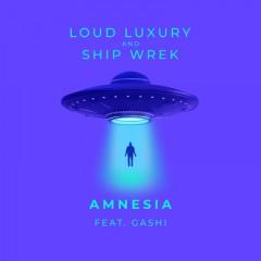Amnesia - Loud Luxury & Ship Wrek feat. GASHI