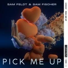 Pick Me Up - Sam Feldt & Sam Fischer
