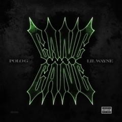 Gang Gang - Polo G & Lil Wayne