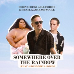Somewhere Over The Rainbow - Robin Schulz, Alle Farben & Israel Kamakawiwo'ole
